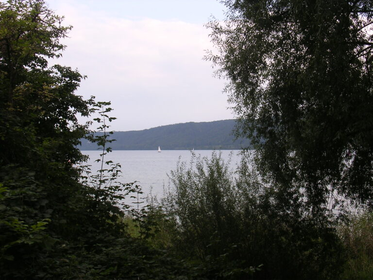 bei Ludwigshafen