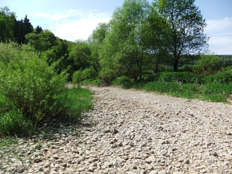 naturnaher Radweg